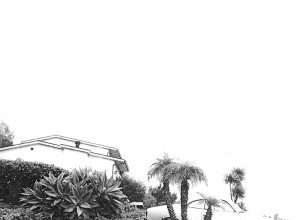 Photo of Timber Timbre – Un Hot Dreams cinématographique