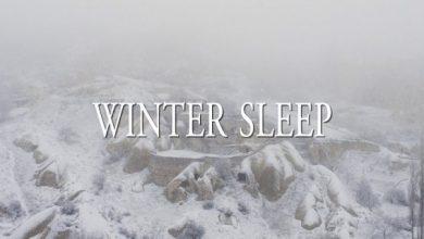 Photo of Winter Sleep : Le Festin de Babel