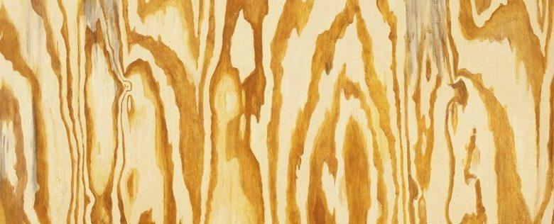 Photo of Mazes, des échardes dans le poisson