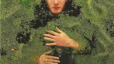 Photo of Alain Bashung, Fantaisiste Armé