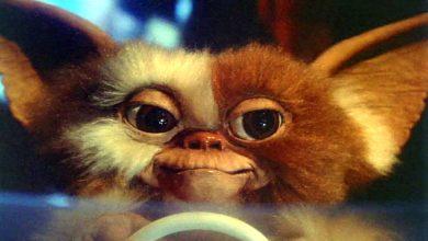 Photo de Gremlins : Les débiles jubilent, chanson de geste.