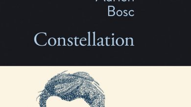 Photo of Constellation – Adrien Bosc
