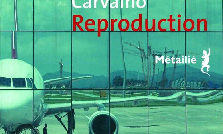 Photo of Reproduction Bernardo Carvalho