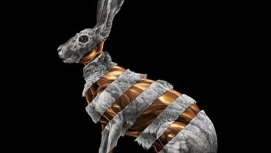 Photo of Jackrabbit : La luxure sonore de San Fermin