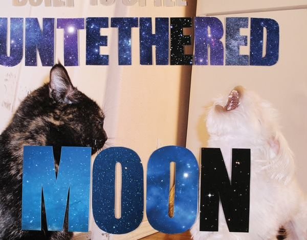 Photo of Built To Spill – Untethered Moon