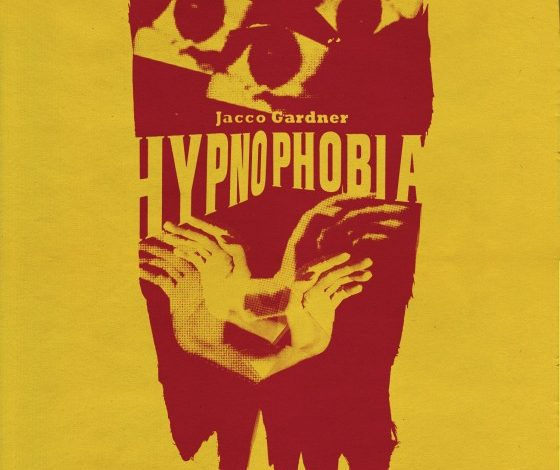 Photo of Jacco Gardner – Hypnophobia : Hollandais plânant