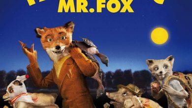 Photo of Fantastic Mr. Fox de Wes Anderson : Mon père ce héros au sourire si roux.