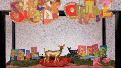 Photo of Speedy Ortiz : Foil Deer