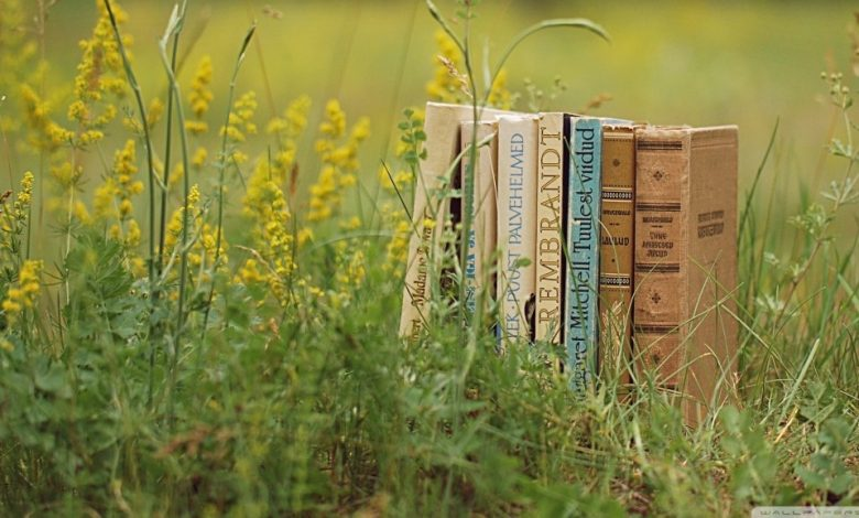 Photo of Les livres de poche qui feront votre été