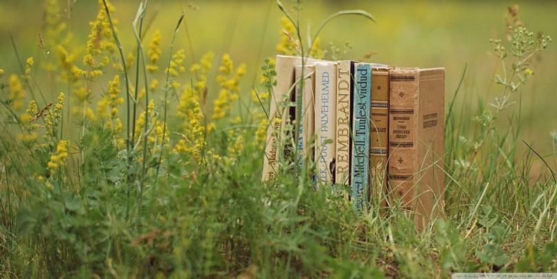 Les Livres De Poche Qui Feront Votre Ete Addict Culture
