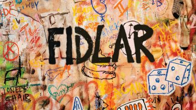 Photo de FIDLAR redouble