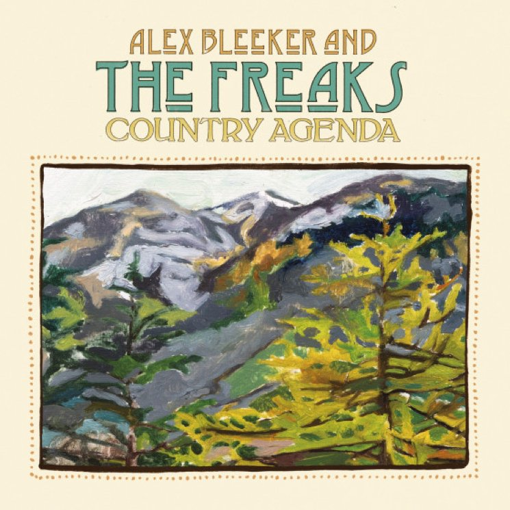Alex Bleeker And The Freaks Johan 1