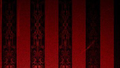 Photo de Du Rouge au Noir : coups de cœur Babel Noir