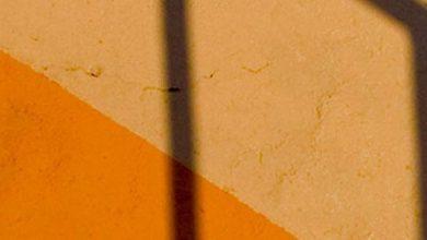 Photo of L'ombre s'allonge de Jean-Paul Goux