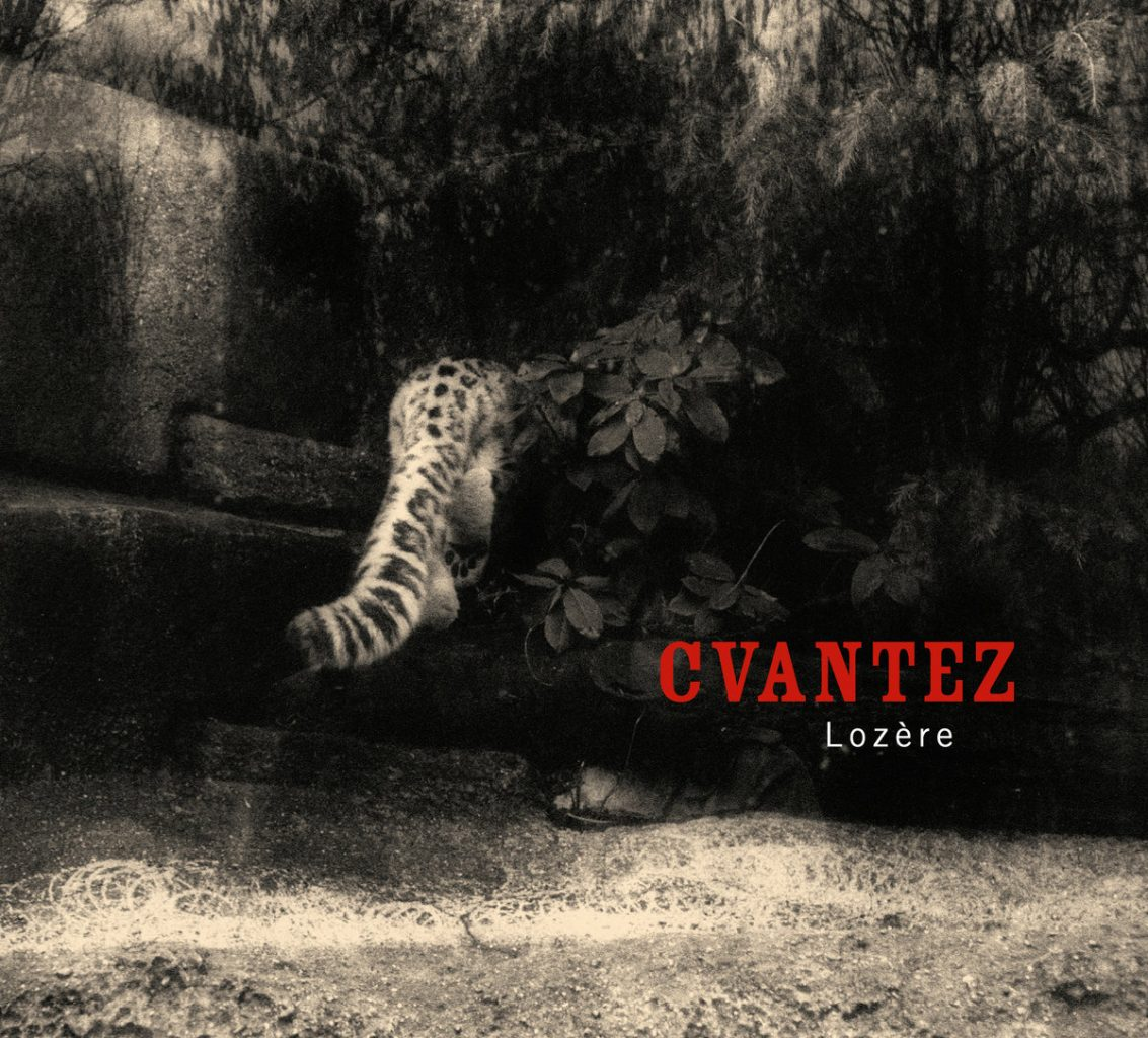 cvantez1