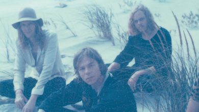 Photo of {Le son du jour} Cage The Elephant : Cold Cold Cold