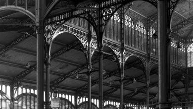 Photo of La Halle de Julien Syrac, un premier roman maîtrisé et fascinant
