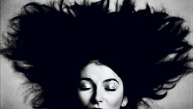 Photo de Kate Bush, une vie, un rêve