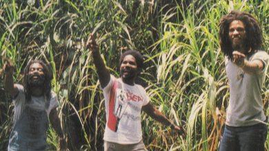 Photo de Voyage au coeur des Congos