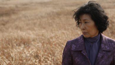 Photo of «Mother» de Bong Joon-ho : Chorégraphie à l'écart du réel