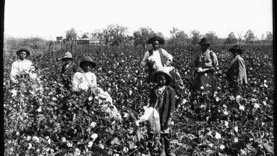 Photo of Rire enchaîné – Petite anthologie de l'humour des esclaves noirs américains