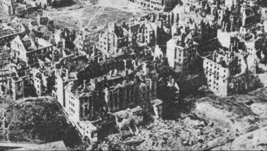 Photo de «Le parlement des cigognes» de Valère Staraselski : L'Histoire oubliée
