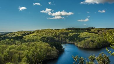 Photo of «Ce qu'on entend quand on écoute chanter les rivières», confluences solitaires de Barney Norris