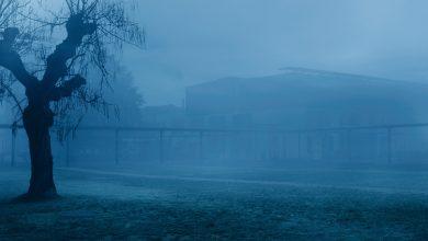 Photo of «12 Jours» de Raymond Depardon : «Merci pour votre abus de pouvoir»