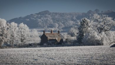 Photo de Des classiques à (re)découvrir : «Givre et Sang» de John Cowper Powys
