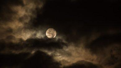 Photo of «Miss Pook et les enfants de la Lune» de Bertrand Santini, un voyage effrayant et poétique