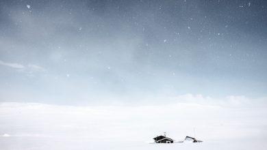 Photo of «Le Poids de la Neige» : des cendres blanches pour horizon