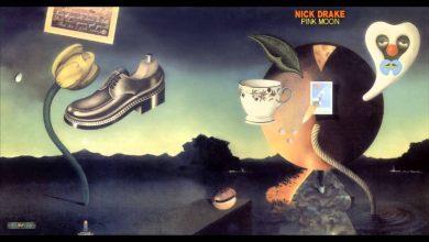Photo of 25 février : 1972, sortie du dernier album de Nick Drake, «Pink Moon»