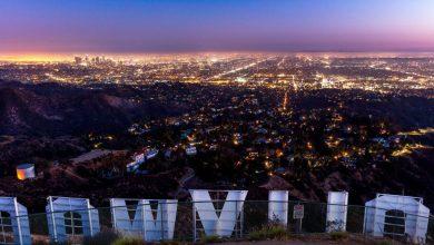 Photo of «Tout le Monde Aime Bruce Willis» de Dominique Maisons. Hollywood dans tous ses états.
