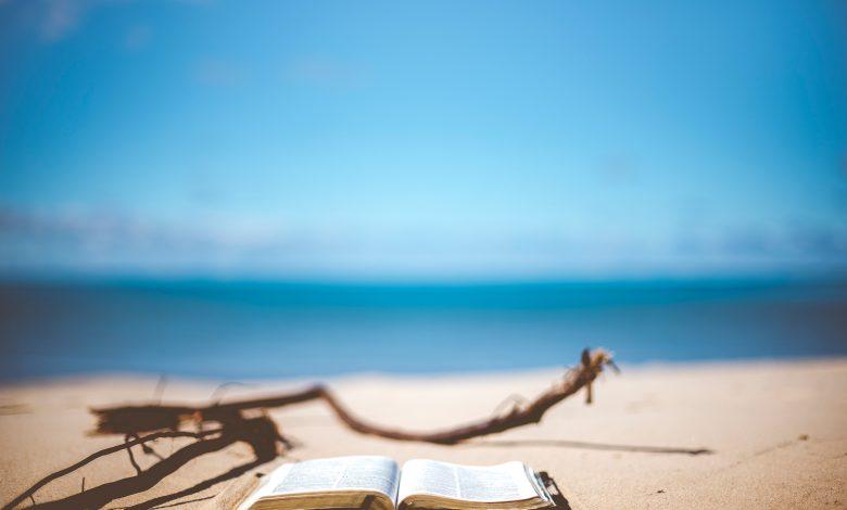 Photo de 36 Conseils de lecture pour l'été !