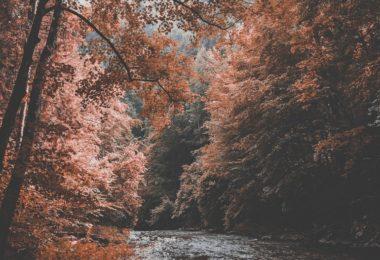 rivière tremblante