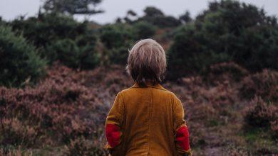 Photo of Isidore et les autres : un roman sincère et attentif sur la jeunesse, l'âge adulte et le chagrin