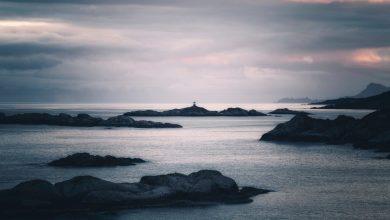 Photo of Kruso de Lutz Seiler : de la poétique d'une île