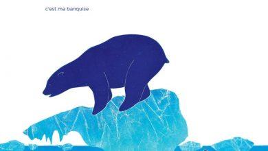 Photo of «À moi !» de Marine Rivoal. Un ours et sa banquise.
