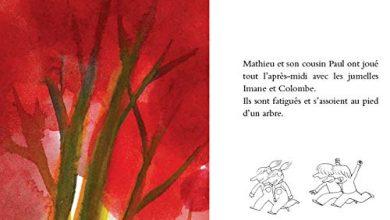 Photo of «L'arbre à tout» de Julien Baer. Tout ou rien, du moment qu'on est ensemble…