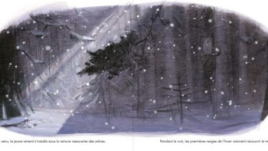 Photo of «Le renard blanc», un album des premières neiges