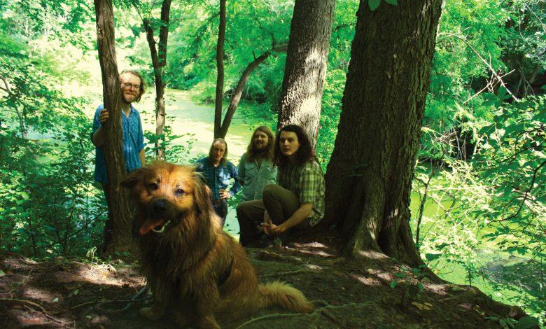 Photo of {Le Son Du Jour} David Nance Group – In Her Kingdom