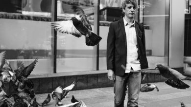 Photo of Steve Gunn – «The Unseen In Between» : quand l'hypnotisme rencontre la virtuosité intelligente