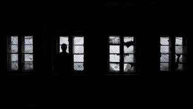 Photo of «Le Chant de l'assassin» de R.J. Ellory