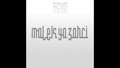 Photo of {Le Son Du Jour} : Acid Arab feat. Cheikha Hadjla – Malek Ya Zahri
