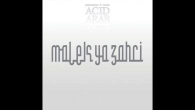 Photo de {Le Son Du Jour} : Acid Arab feat. Cheikha Hadjla – Malek Ya Zahri
