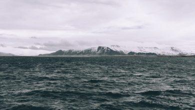 Photo of «Miss Islande» de Auđur Ava Ólafsdóttir : souffler un vent de liberté