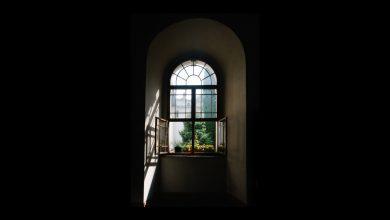 Photo of L'horizon bouleversant de Pascal Dessaint