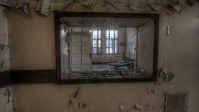 Photo of Seules les proies s'enfuient : l'enfer psychiatrique vu par Neely Tucker