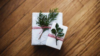 Photo of Cadeaux de Noël Littéraires 2019 #02