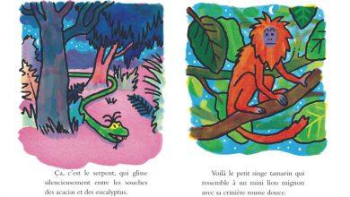 Photo de «La légendaire histoire du colibri qui sauva l'Amazonie» : une allégorie de Gwendoline Raisson